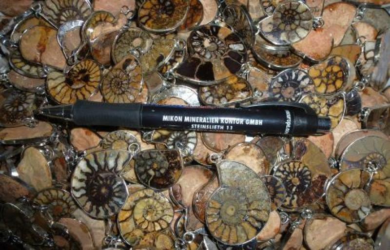 Ammoniten, rund, ca. 4 cm mit echt Silberfassung als Anhänger. 10 Stück