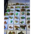 Mineralien der USA (Arizona, Utah und Nevada) 10 Steigen