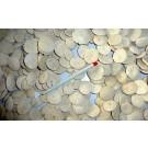 Seeigel, flach, rund, Marokko, 1 Stück