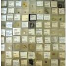 MM - Mikromount - Sammlung, 1 Partie von 100 Verschiedenen besonders guten und seltenen MM