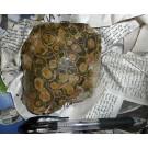 Fossile Koralle, Marokko, poliert, 10 Stück