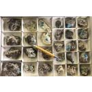 Cavansit Kristalle auf Matrix, Poona, Bombay, Indien, 1 Steige