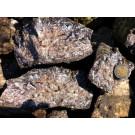 Siderit Kristalle mit Bergkristall (druzy!), Hüttschental, Harz, D. 50 kg