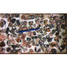 Cerussit Kristalle auf Matrix, Mibladen, Marokko, 1 Steige