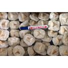 Haifischzähne, small, in Matrix eingesetzt, Marokko, 1 Stück
