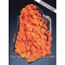Mineralogical Record Vol. 36, #2 2005