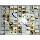 Mixed minerals from Grube Schöne Aussicht, Dernbach, Westerwald, Germany, 1 lot of 62 pieces.