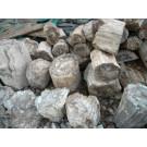 Petrified wood, one side saw cut, Madagascar, 40 kg