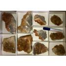 Calcite crystals on matrix, orange, La Sambre, Landelies, Charleroi, Belgium, 1 flat (larger specimen)