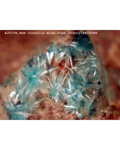 Ajoit xx; New Cornelia Mine, Ajo, Yavapai Co., AZ, USA; KS