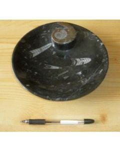 Ammoniten-Teller, rund, schwarz, 25 cm. 1 Stück