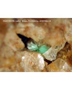 Ulrichit xx; Lake Boga Quarry, Lake Boga, Victoria, Australien; MM