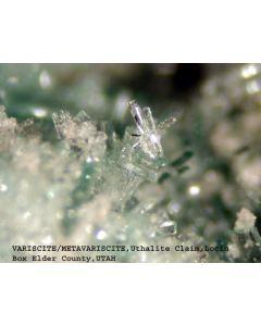Variscit xx; Utah Lite Claim, Lucin, UT, USA; MM