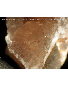 Whitlockit xx/(xx); Palermo Mine, North Groton, Grafton Co., NH, USA; MM
