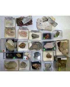 Calcit + Manganocalcit xx (UV!), N'Chwaning Mine, Südafrika, 1 Partie mit 23 Top-Stücken