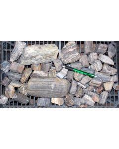 Fossiles (versteinertes) Holz, Ottendorf-Okrilla, Sachsen, D. 1 kg