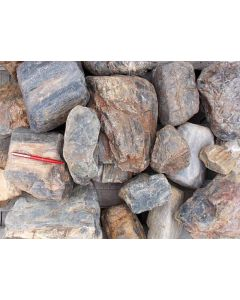 Fossiles (versteinertes) Holz, Kiesgrube Sermuth bei Gnandstein, Sachsen, D., 1 kg