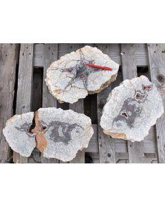Achat (Achateier), Börtewitz, Sachsen, D., Partie aus 3 großen gesägten Stücken, Gesamtgewicht ca. 25 kg