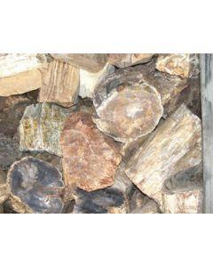 Fossiles (versteinertes) Holz, einseitig gesägt, Madagaskar, 1000 kg