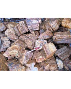Fossiles (versteinertes) Holz, kleinere Stücke, Madagaskar, 1 kg