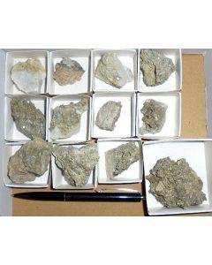 Nifontovit X/(xx), Charcas Mines, San Luis Potosi, Mexiko, 1 Beutel Minimining