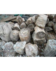 Fossiles (versteinertes) Holz, einseitig gesägt, Madagaskar, 40 kg