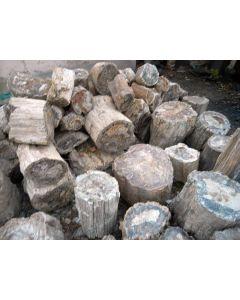 Fossiles (versteinertes) Holz, einseitig gesägt, Madagaskar, 45 kg