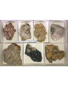 Galenit (Bleiglanz), Pyrit, Arsenopyrit, Calcit, Rhodochrosit etc. Erzmineralien in Kristallen auf Matrix, Trepca, Kosovo, 10 Steigen mit 4-12 Stück