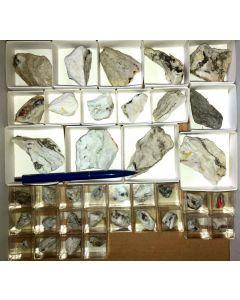 Gemischte Mineralien aus der Grube Lengenbach, CH, 1 kleine Steige (37 Stück)