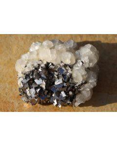 Galenit (Bleiglanz), Pyrit, Arsenopyrit, Calcit, Rhodochrosit etc. Erzmineralien in Kristallen auf Matrix, Trepca, Kosovo, 1 Steige mit 4-8 Stück