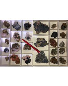 Galenit (Bleiglanz), Pyrit, Arsenopyrit, Calcit, Rhodochrosit etc. Erzmineralien in Kristallen auf Matrix, Trepca, Kosovo, 1 Steige mit 26 Stück