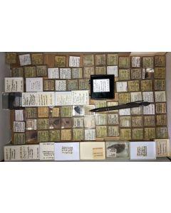 Gemischte Mineralien aus dem Schwarzwald, D., 1 Partie mit 92 Stück.