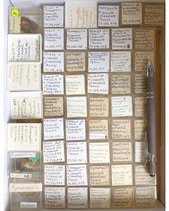 Gemischte Mineralien aus dem Taunus, Hessen, Deutschland, 1 Partie mit 52 Stück.