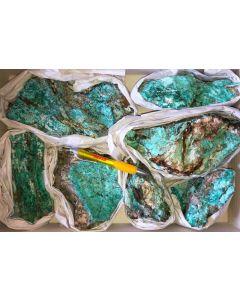 Serpierit, Namuwit, Ktenasit, Spangolit xx, Serpieri Mine, Laurion, Griechenland, 1 große Steige