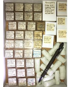 Gemischte Mineralien von Cornwall, England, GB, 1 Partie mit 40 Stück.