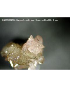Reddingite xx; Mina Jacao, Galilea, MG, Brazil; MM