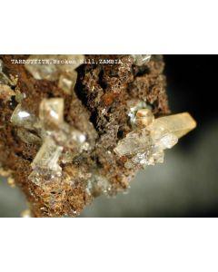 Tarbuttite xx; Broken Hill Mine, Kabwe, Zambia; MM