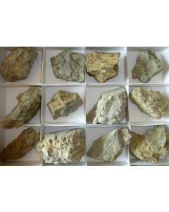 Ericaite xx, Bolivia, 1 flat