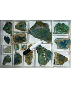 Cornetite xx, Reichenbachite, South Afrika, 1 flat