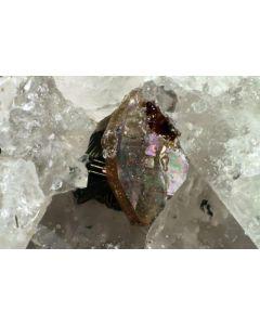 Ferri-Mottanaite - (Ce) xx; Monte Tozzo, Campagnano, I; KS