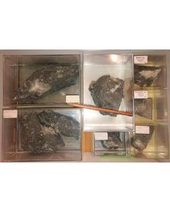 Aris, Windhoek, Namibia; small collection of well identified specimen; 1 lot of 7 specimen, large flat