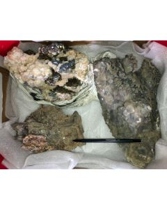 Galena, Pyrite, Arsenopyrite, Calcite, Rhodochrosite etc. sulphide crystals on matrix, Trepca, Kosovo, 1 flat with 3 specimen