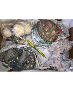 Galena, Pyrite, Arsenopyrite, Calcite, Rhodochrosite etc. sulphide crystals on matrix, Trepca, Kosovo, 1 flat with 4 specimen