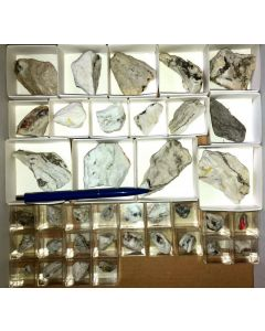 Mixed minerals from the Lengenbach Quarry, Switzerland, 1 small flat (37 specimen)