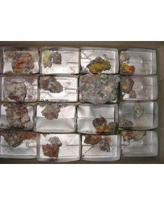 Arsenolite xx, Claudetite xx Saxony, Germany, 1 flat